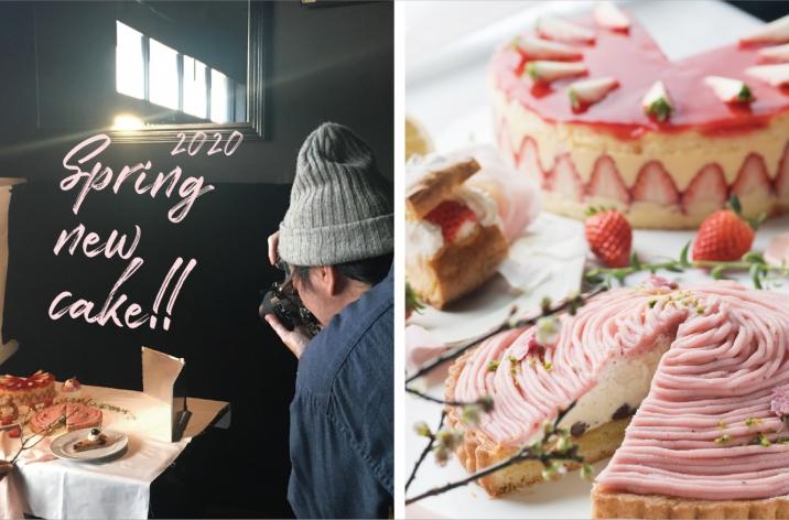 春の新作ケーキ写真撮影